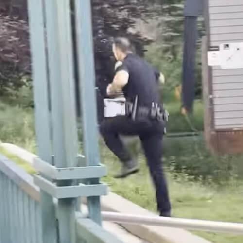 полицейский прогнал медведя в лес