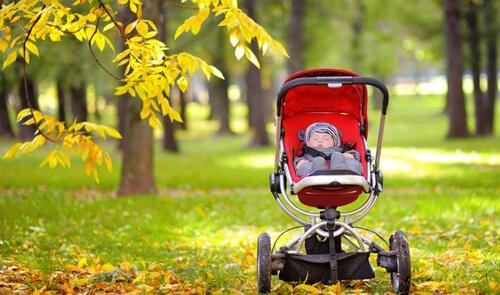 ребёнка забыли в парке