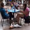 ребёнок на полу в торговом центре