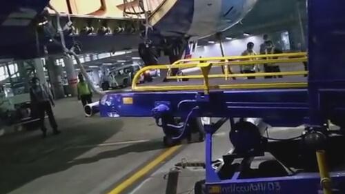 змея быстро проникла в самолёт