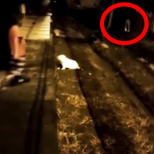 призрачные штаны бегут по улице