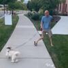 пёс запутал своего хозяина