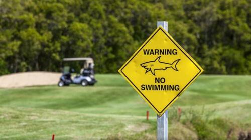 акулы в гольф-клубе