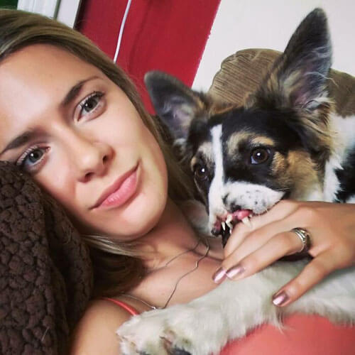 собака с шокирующими травмами