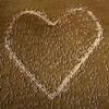 рисунок сердца составлен из овец