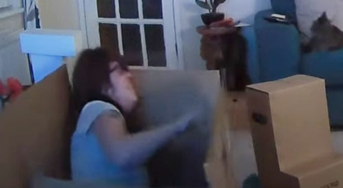 мама спряталась в коробке