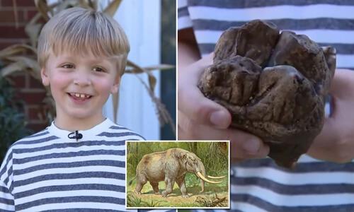 мальчик нашёл зуб мастодонта