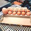 Курица снесла слишком крупное яйцо, содержащее в себе неожиданный сюрприз