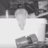 Мышь каждый вечер помогает пожилому мужчине делать уборку