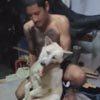"""Пёс """"умирает"""" каждый раз, когда ему нужно мыться"""